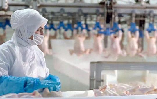 Beyaz Et Sektöründe Kadın İstihdam Oranı Türkiye Ortalamasının Üzerinde